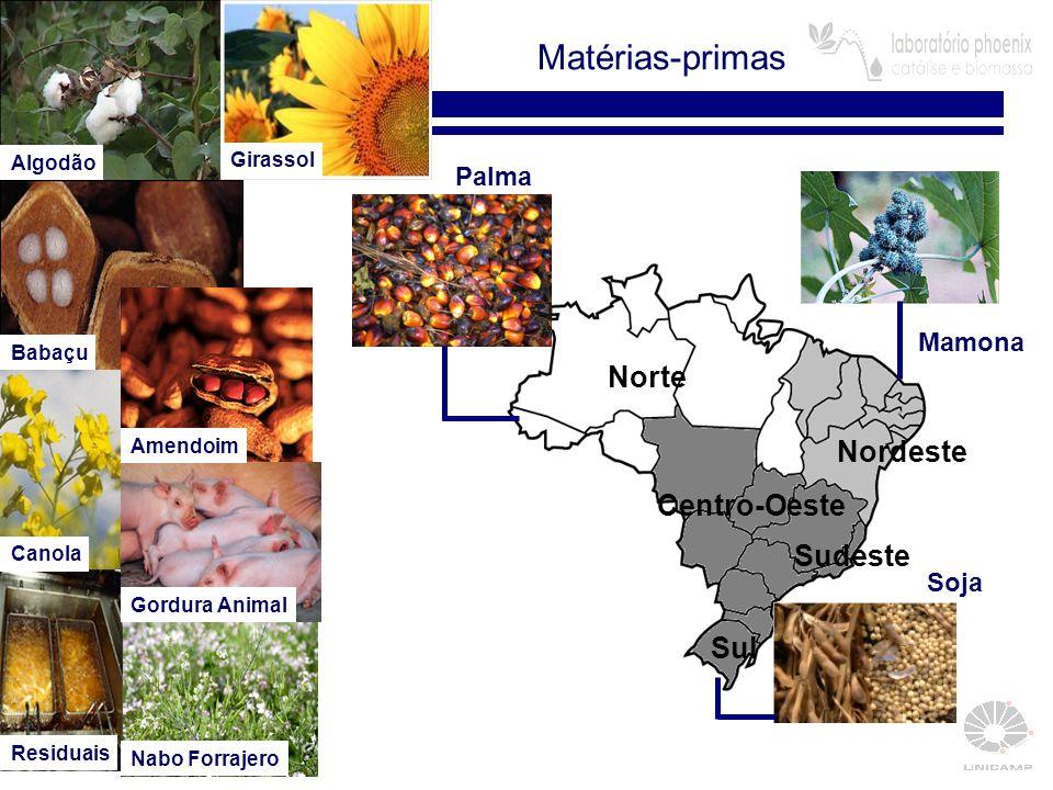 8 Matérias-primas Biodiesel de Mamona: Solução ou Problema.
