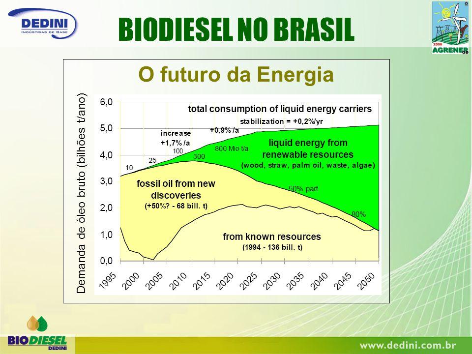 BIODIESEL NO BRASIL O futuro da Energia Demanda de óleo bruto (bilhões t/ano)