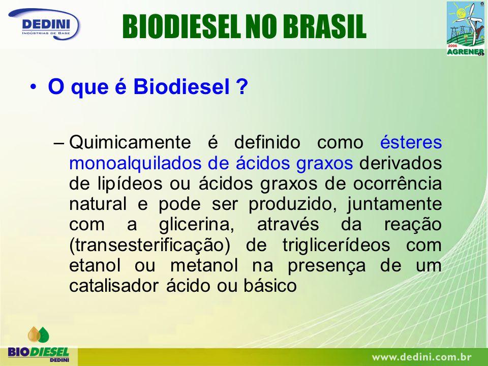 –Substituto parcial ou total do diesel BIODIESEL NO BRASIL –Aditivo natural ao diesel –Matéria-prima renovável para Oleoquímica Para que serve o Biodiesel ?