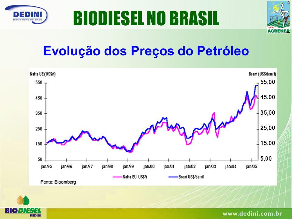 Evolução dos Preços do Petróleo 55,00 45,00 35,00 25,00 15,00 5,00 BIODIESEL NO BRASIL