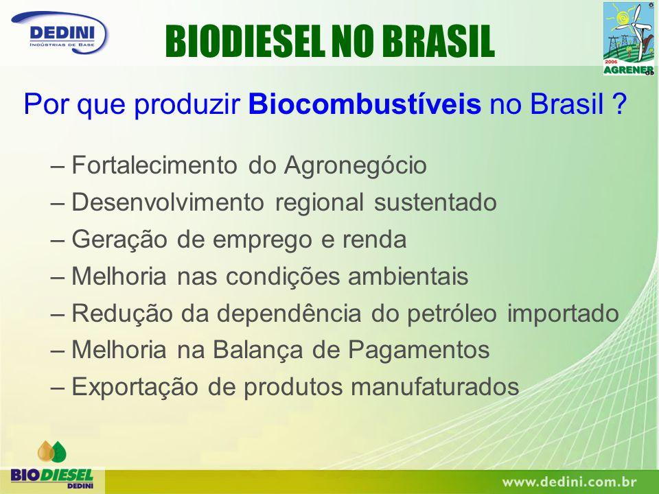 –Fortalecimento do Agronegócio –Desenvolvimento regional sustentado –Geração de emprego e renda –Melhoria nas condições ambientais –Redução da dependê