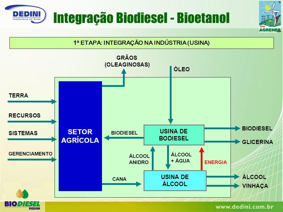 1 ª ETAPA: INTEGRAÇÃO NA INDÚSTRIA (USINA) ENERGIA ÁLCOOL + ÁGUA ÁLCOOL ANIDRO GRÃOS (OLEAGINOSAS) ÓLEO TERRA RECURSOS SISTEMAS GERENCIAMENTO BIODIESE