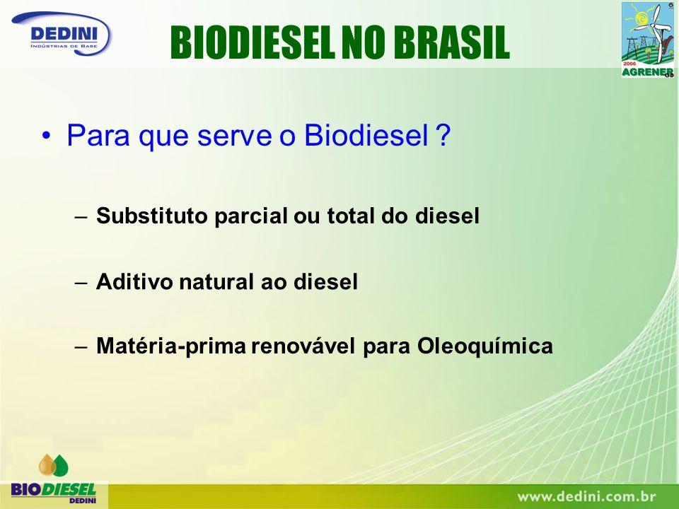 –Substituto parcial ou total do diesel BIODIESEL NO BRASIL –Aditivo natural ao diesel –Matéria-prima renovável para Oleoquímica Para que serve o Biodi