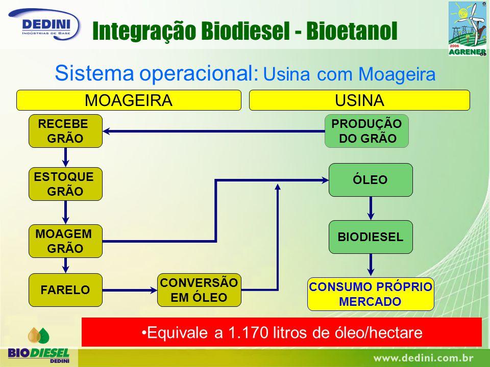 PRODUÇÃO DO GRÃO RECEBE GRÃO ESTOQUE GRÃO MOAGEM GRÃO ÓLEO FARELO CONVERSÃO EM ÓLEO MOAGEIRAUSINA BIODIESEL CONSUMO PRÓPRIO MERCADO Sistema operaciona