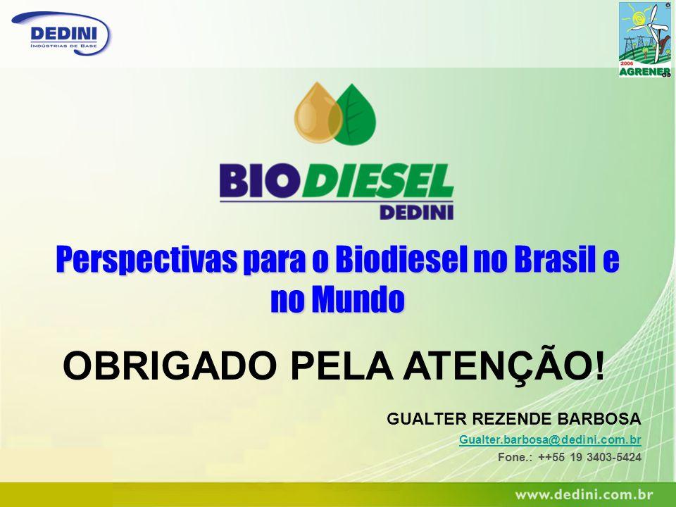 Perspectivas para o Biodiesel no Brasil e no Mundo OBRIGADO PELA ATENÇÃO! GUALTER REZENDE BARBOSA Gualter.barbosa@dedini.com.br Fone.: ++55 19 3403-54