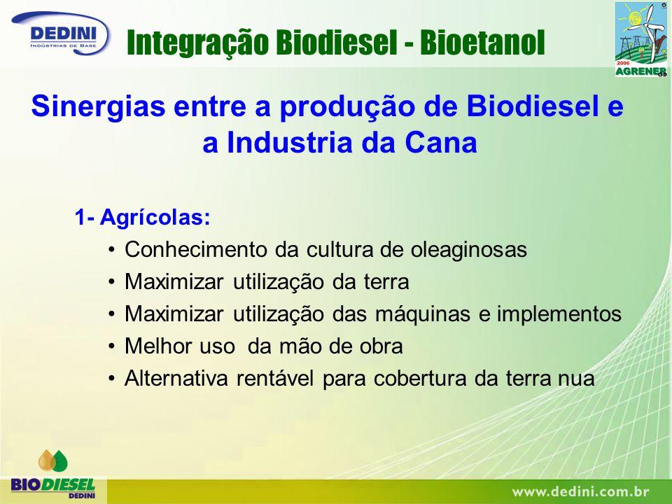 1- Agrícolas: Conhecimento da cultura de oleaginosas Maximizar utilização da terra Maximizar utilização das máquinas e implementos Melhor uso da mão d