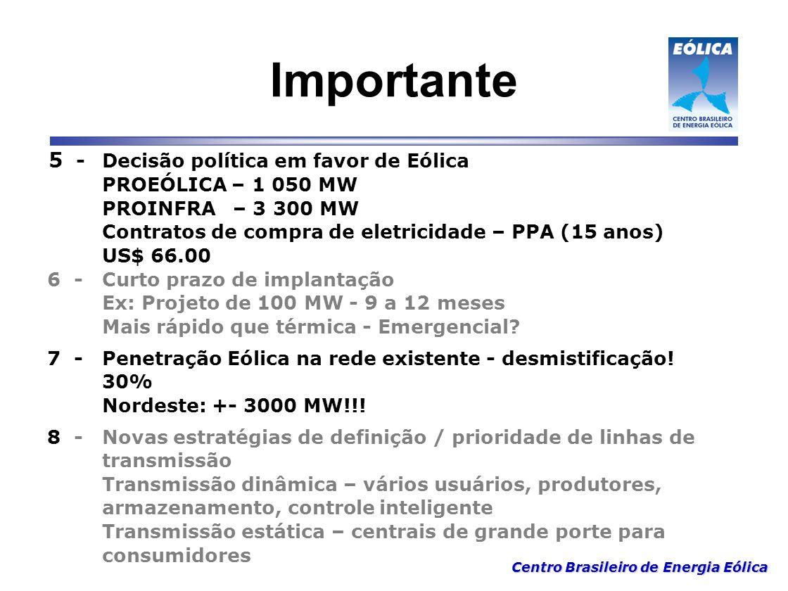 Centro Brasileiro de Energia Eólica Importante 5 - Decisão política em favor de Eólica PROEÓLICA – 1 050 MW PROINFRA – 3 300 MW Contratos de compra de