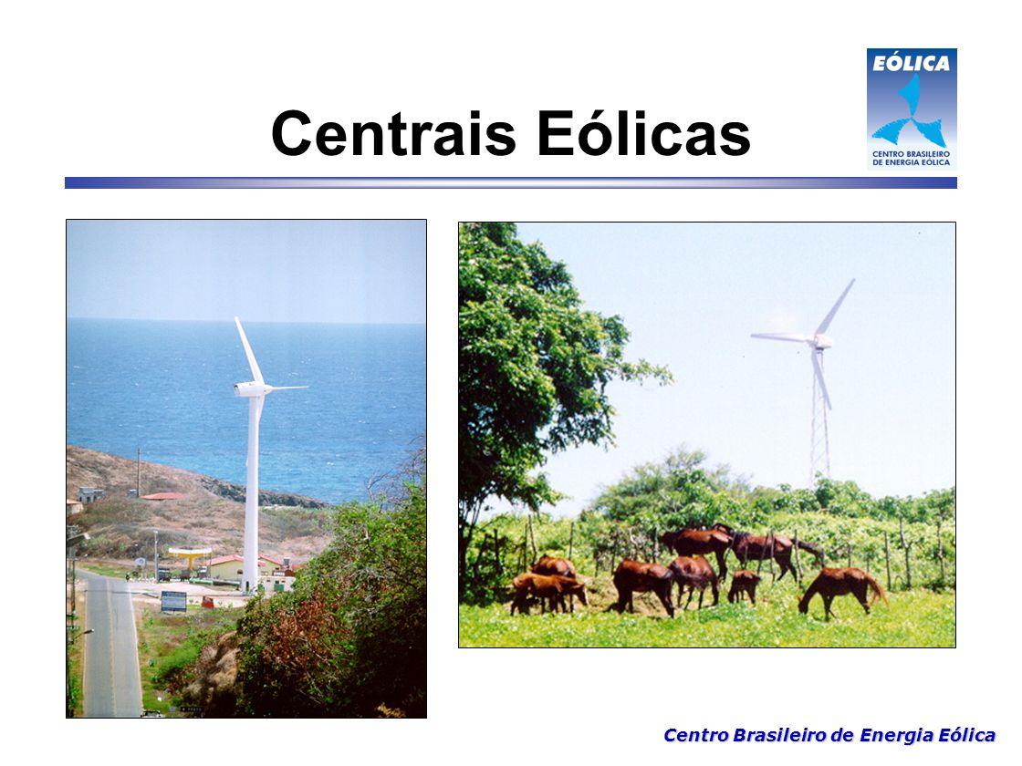 Centro Brasileiro de Energia Eólica Importante 1 - Brasil – Potencial de energia eólica superior a 70.000 MW Curto Prazo: 3 000 MW.