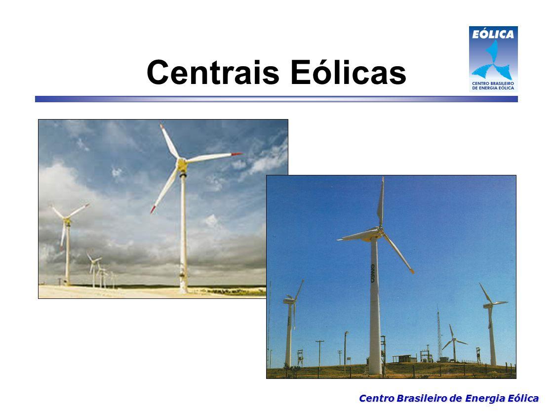 Centro Brasileiro de Energia Eólica Importante 5 - Decisão política em favor de Eólica PROEÓLICA – 1 050 MW PROINFRA – 3 300 MW Contratos de compra de eletricidade – PPA (15 anos) US$ 66.00 6 - Curto prazo de implantação Ex: Projeto de 100 MW - 9 a 12 meses Mais rápido que térmica - Emergencial.