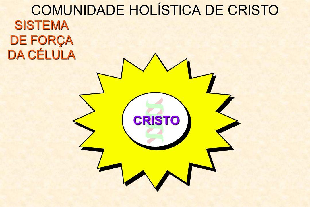 COMUNIDADE HOLÍSTICA DE CRISTO SISTEMA DE FORÇA DA CÉLULA CRISTO