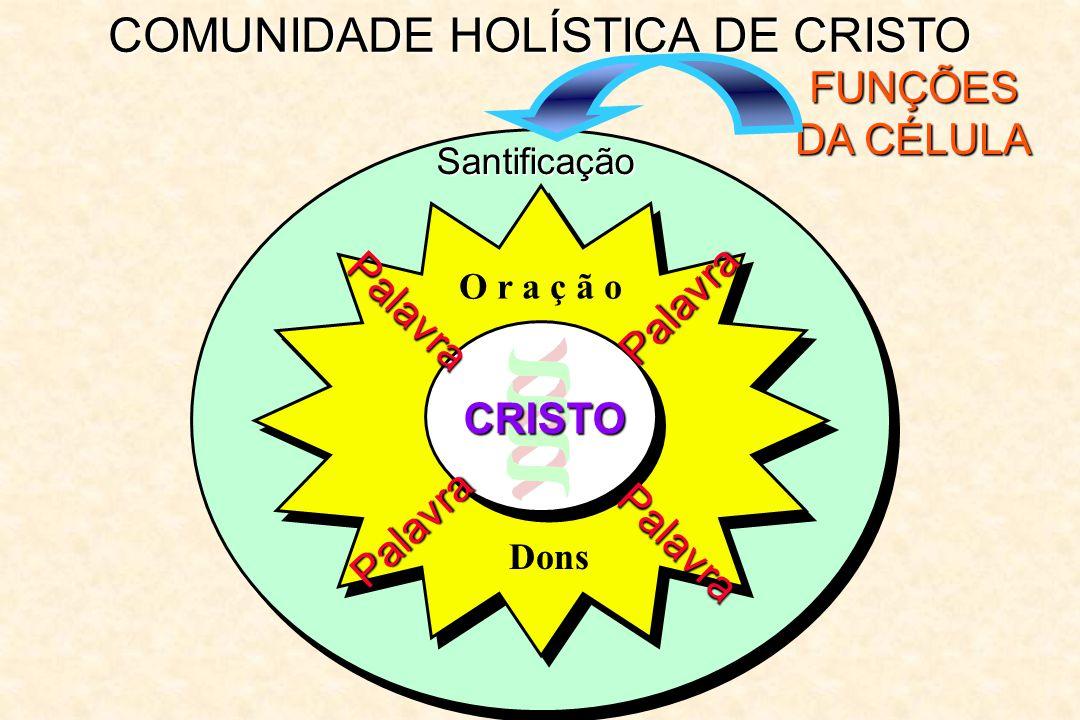 COMUNIDADE HOLÍSTICA DE CRISTO FUNÇÕES DA CÉLULA Santificação Palavra Palavra Palavra Palavra O r a ç ã o CRISTO Dons