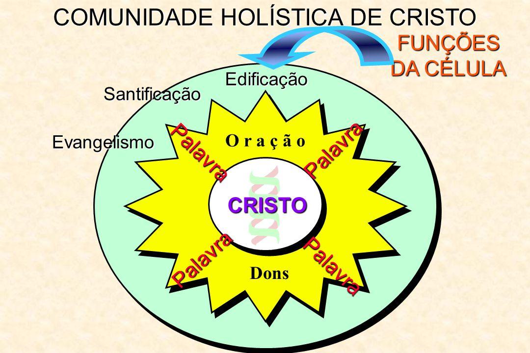 COMUNIDADE HOLÍSTICA DE CRISTO FUNÇÕES DA CÉLULA Edificação Palavra Palavra Palavra Palavra O r a ç ã o CRISTO Dons Santificação Evangelismo