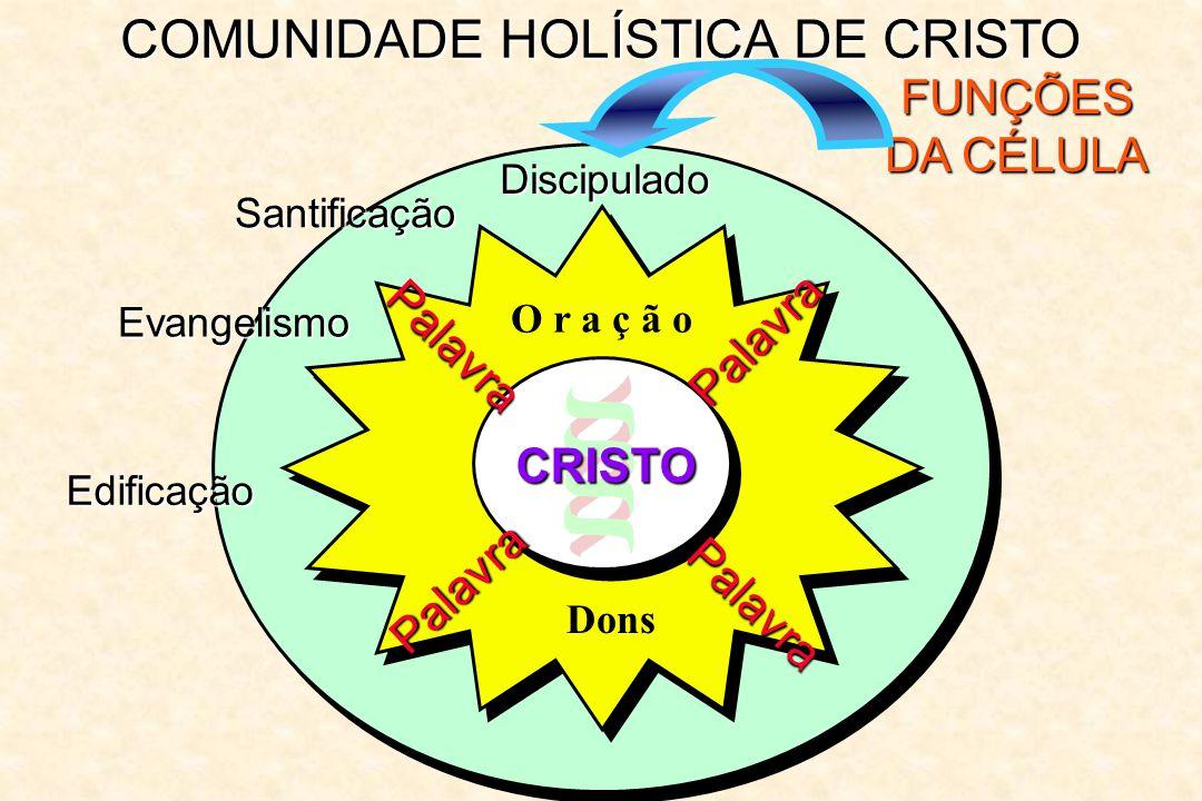 COMUNIDADE HOLÍSTICA DE CRISTO FUNÇÕES DA CÉLULA Discipulado Palavra Palavra Palavra Palavra O r a ç ã o CRISTO Dons Santificação Evangelismo Edificaç