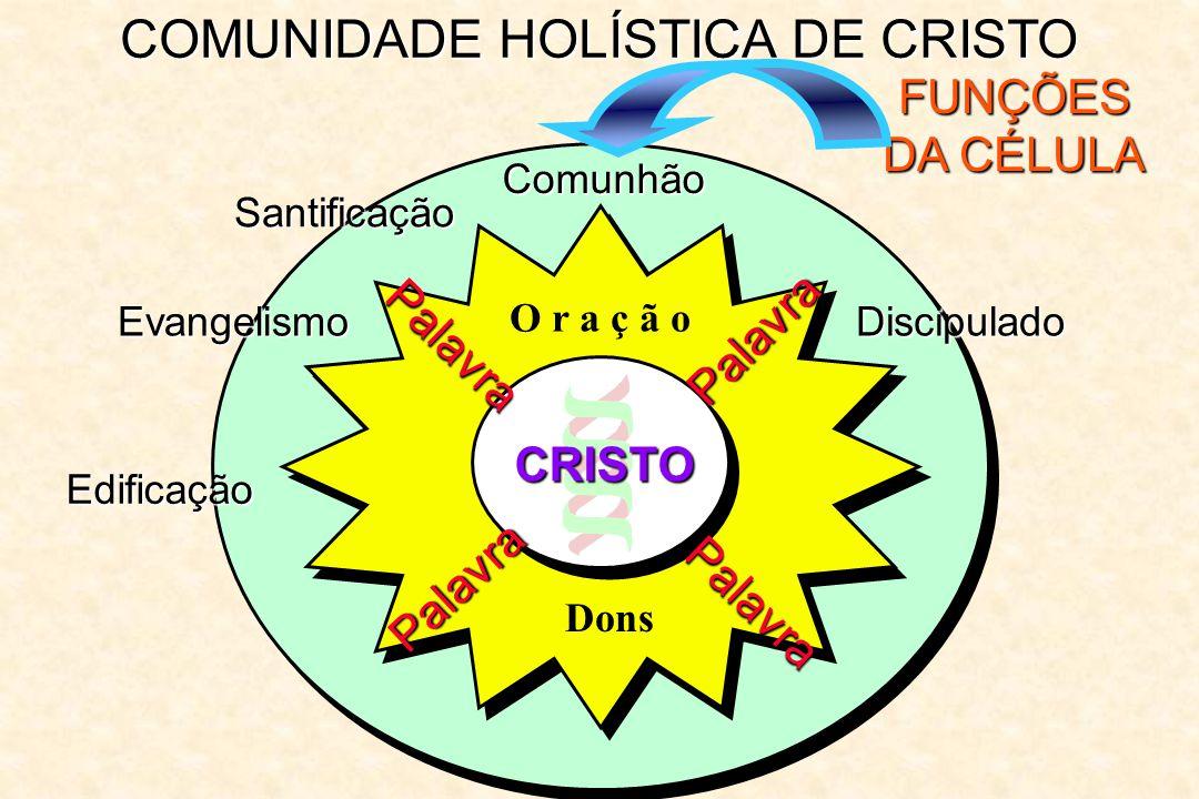 COMUNIDADE HOLÍSTICA DE CRISTO FUNÇÕES DA CÉLULA Comunhão Palavra Palavra Palavra Palavra O r a ç ã o CRISTO Dons Santificação Evangelismo Edificação