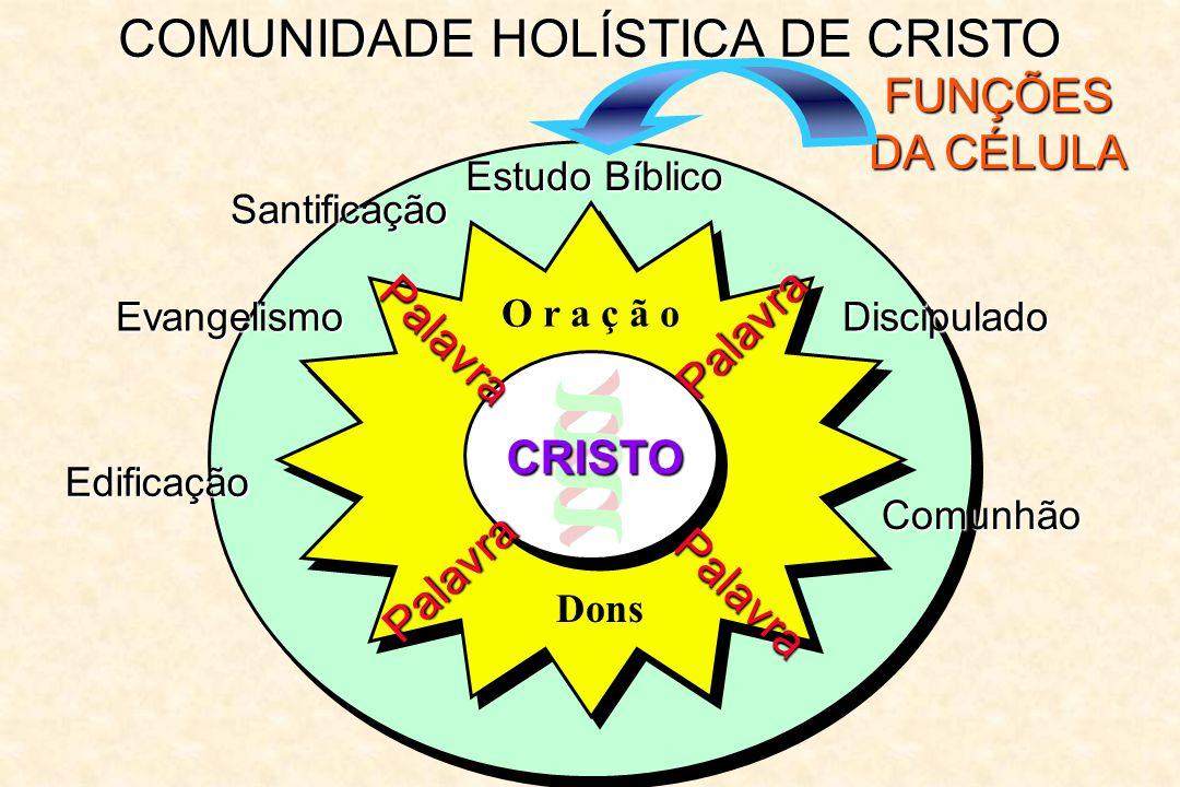 COMUNIDADE HOLÍSTICA DE CRISTO FUNÇÕES DA CÉLULA Estudo Bíblico Palavra Palavra Palavra Palavra O r a ç ã o CRISTO Dons Santificação Evangelismo Edifi