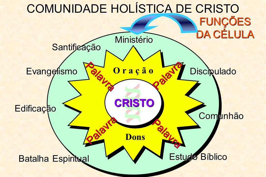COMUNIDADE HOLÍSTICA DE CRISTO FUNÇÕES DA CÉLULA Ministério Palavra Palavra Palavra Palavra O r a ç ã o CRISTO Dons Santificação Evangelismo Edificaçã