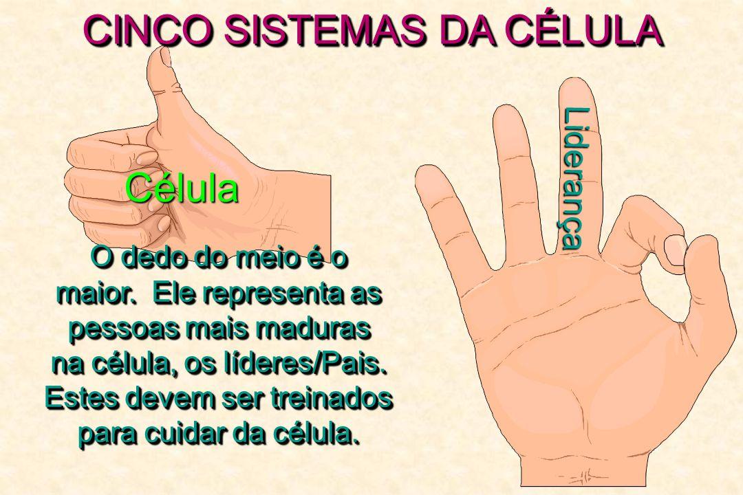 CINCO SISTEMAS DA CÉLULA Célula Liderança O dedo do meio é o maior. Ele representa as pessoas mais maduras pessoas mais maduras na célula, os líderes/