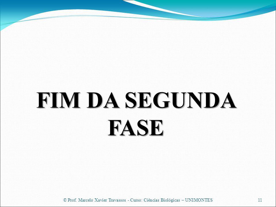 © Prof. Marcelo Xavier Travassos - Curso: Ciências Biológicas – UNIMONTES11 FIM DA SEGUNDA FASE