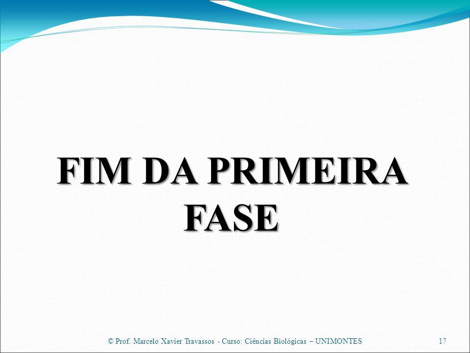 © Prof. Marcelo Xavier Travassos - Curso: Ciências Biológicas – UNIMONTES17 FIM DA PRIMEIRA FASE