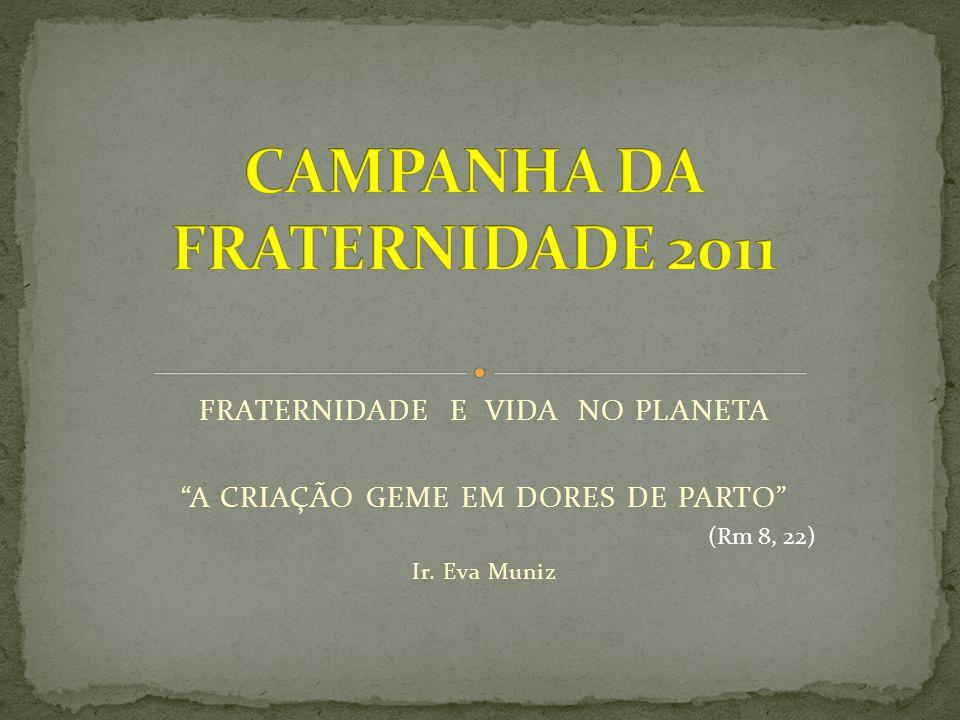FRATERNIDADE E VIDA NO PLANETA A CRIAÇÃO GEME EM DORES DE PARTO Ir. Eva Muniz (Rm 8, 22)
