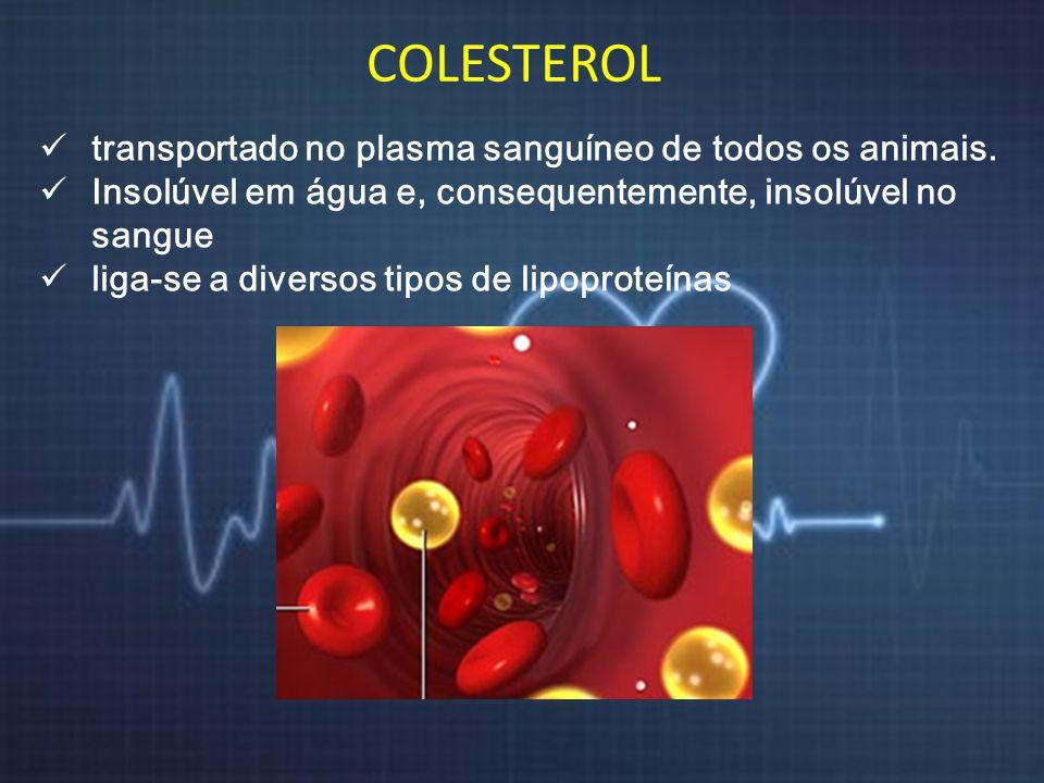 COLESTEROL transportado no plasma sanguíneo de todos os animais. Insolúvel em água e, consequentemente, insolúvel no sangue liga-se a diversos tipos d