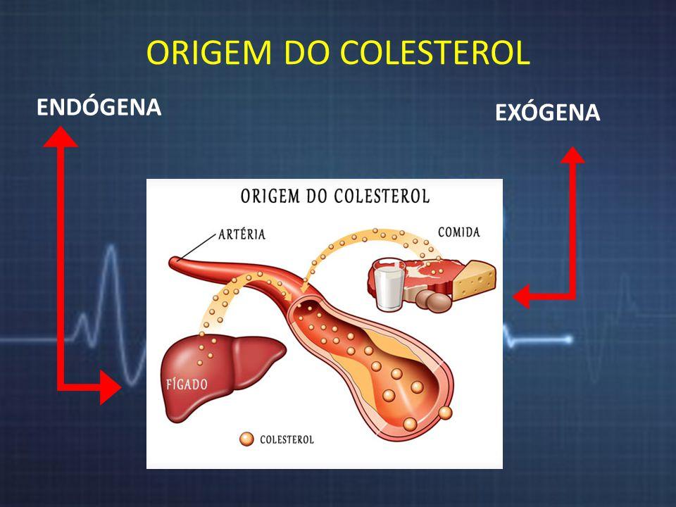 ORIGEM DO COLESTEROL ENDÓGENA EXÓGENA