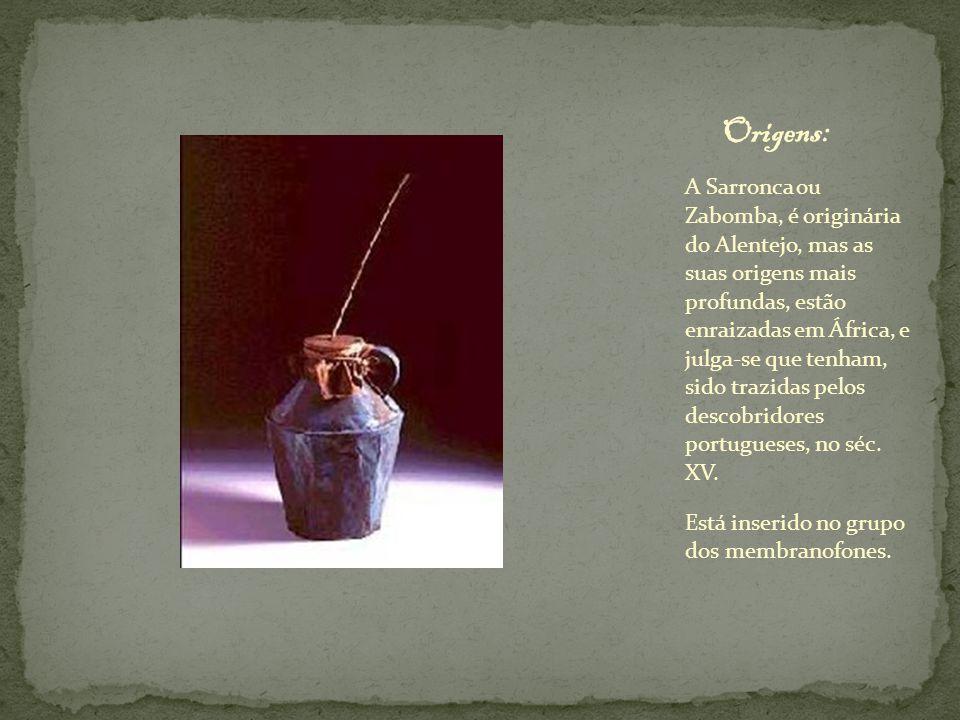 A Sarronca ou Zabomba, é originária do Alentejo, mas as suas origens mais profundas, estão enraizadas em África, e julga-se que tenham, sido trazidas