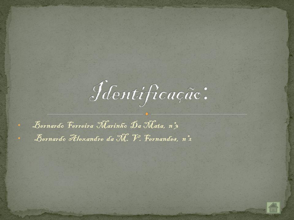 Bernardo Ferreira Marinho Da Mata, nº3 Bernardo Alexandre da M. V. Fernandes, nº2