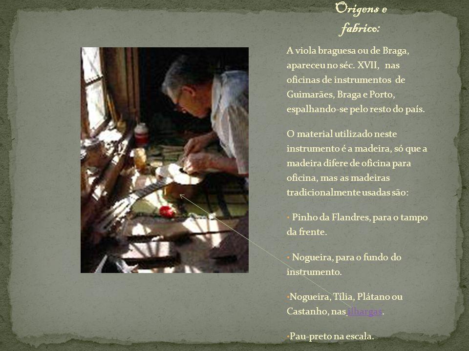 A viola braguesa ou de Braga, apareceu no séc. XVII, nas oficinas de instrumentos de Guimarães, Braga e Porto, espalhando-se pelo resto do país. O mat