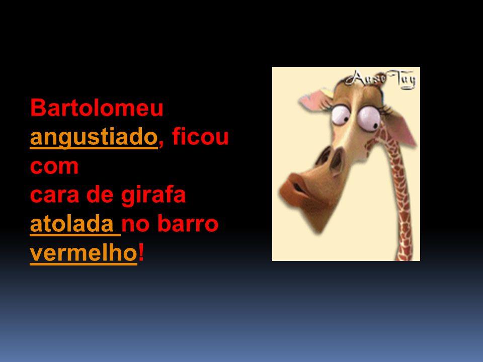 Bartolomeu angustiado, ficou com angustiado cara de girafa atolada no barro vermelho.