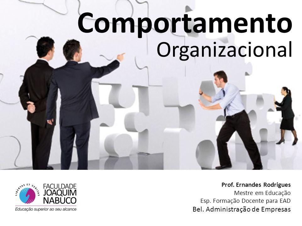 Prof. Ernandes Rodrigues Mestre em Educação Esp. Formação Docente para EAD Bel. Administração de Empresas Comportamento Organizacional