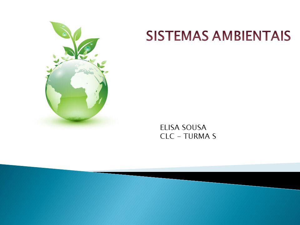 ELISA SOUSA CLC - TURMA S