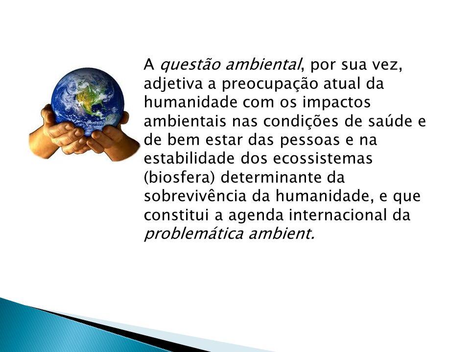 A questão ambiental, por sua vez, adjetiva a preocupação atual da humanidade com os impactos ambientais nas condições de saúde e de bem estar das pessoas e na estabilidade dos ecossistemas (biosfera) determinante da sobrevivência da humanidade, e que constitui a agenda internacional da problemática ambient.