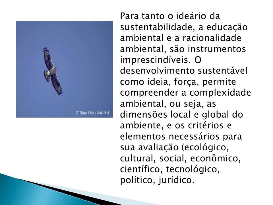 Para tanto o ideário da sustentabilidade, a educação ambiental e a racionalidade ambiental, são instrumentos imprescindíveis. O desenvolvimento susten