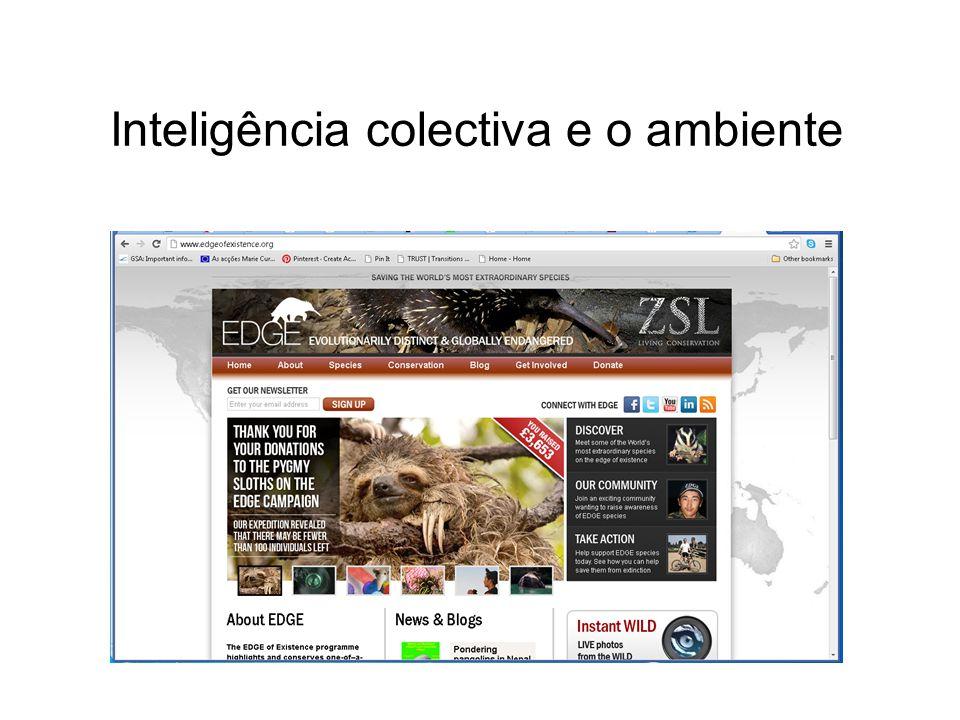 Inteligência colectiva e o ambiente