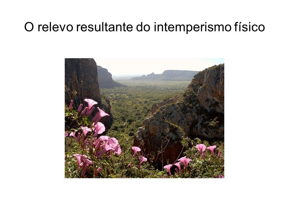 Caatinga: a seca no Sertão Solos incompletos (pedregosos); Insuficiência hídrica; Vegetação de cactáceas (fragilidade apesar da aparência rude); Expulsão dos moradores; Ausência de políticas públicas (concretas)