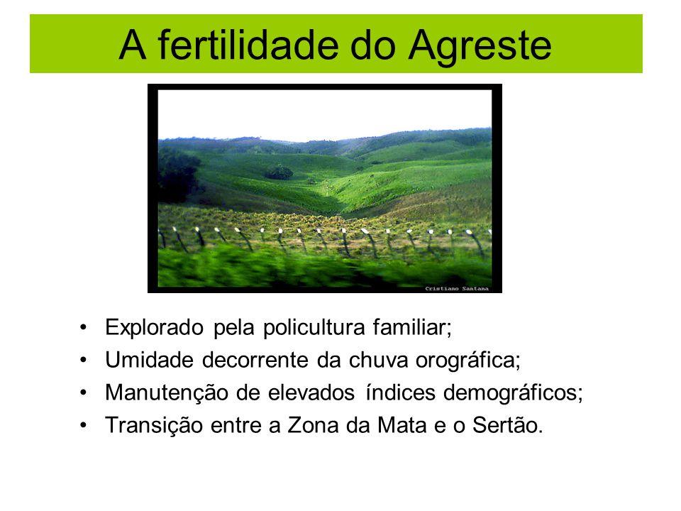 A fertilidade do Agreste Explorado pela policultura familiar; Umidade decorrente da chuva orográfica; Manutenção de elevados índices demográficos; Transição entre a Zona da Mata e o Sertão.