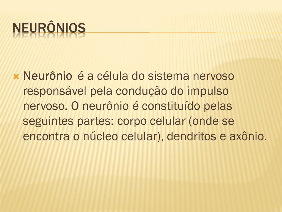  Neurônio é a célula do sistema nervoso responsável pela condução do impulso nervoso. O neurônio é constituído pelas seguintes partes: corpo celular