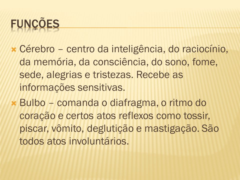  Cérebro – centro da inteligência, do raciocínio, da memória, da consciência, do sono, fome, sede, alegrias e tristezas. Recebe as informações sensit