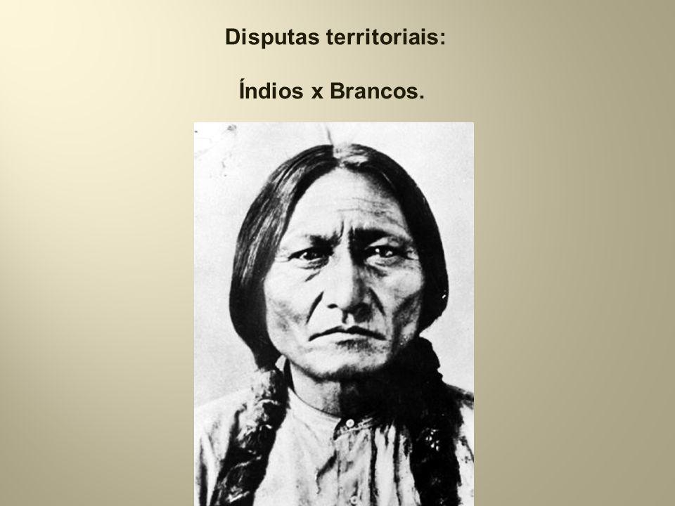 l Disputas territoriais: Índios x Brancos.