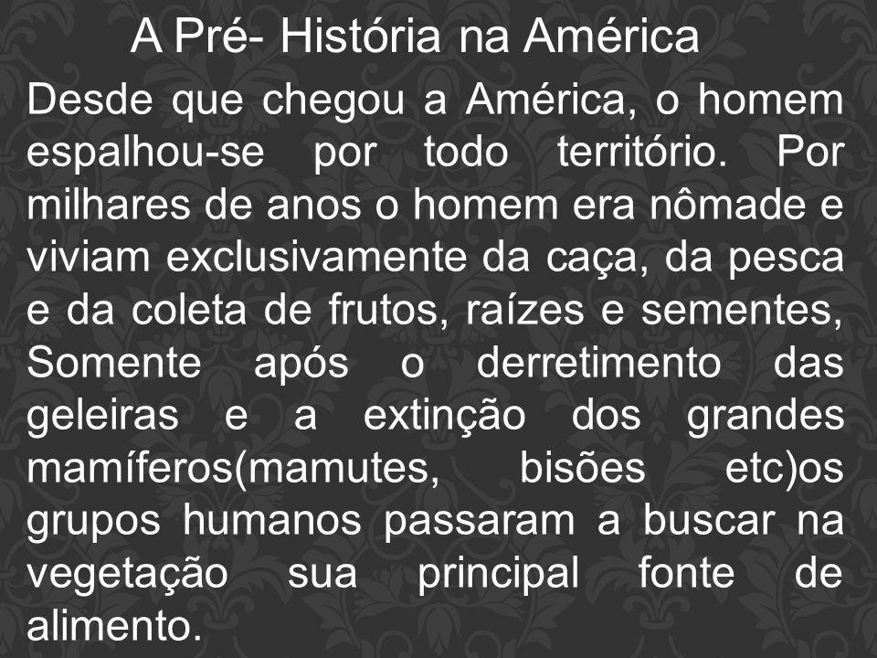 A Pré- História na América Desde que chegou a América, o homem espalhou-se por todo território. Por milhares de anos o homem era nômade e viviam exclu