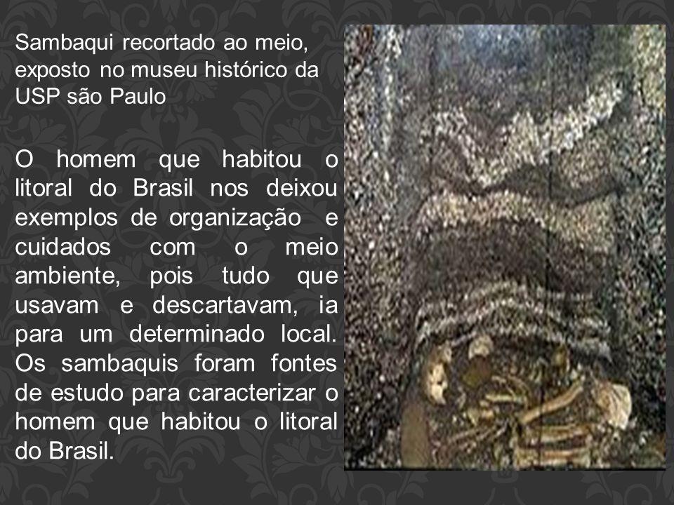 Sambaqui recortado ao meio, exposto no museu histórico da USP são Paulo O homem que habitou o litoral do Brasil nos deixou exemplos de organização e c