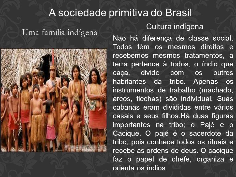 A sociedade primitiva do Brasil Uma família indígena Cultura indígena Não há diferença de classe social. Todos têm os mesmos direitos e recebemos mesm
