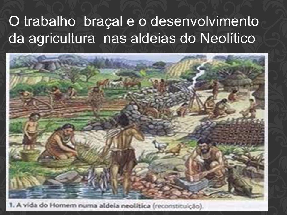 As inovações do Período Neolítico O Arado veio auxiliar a agricultura As ferramentas fazem parte do cotidiano da agricultura