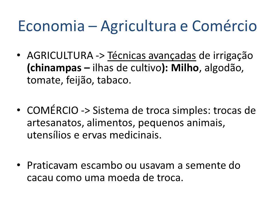 Economia – Agricultura e Comércio AGRICULTURA -> Técnicas avançadas de irrigação (chinampas – ilhas de cultivo): Milho, algodão, tomate, feijão, tabaco.