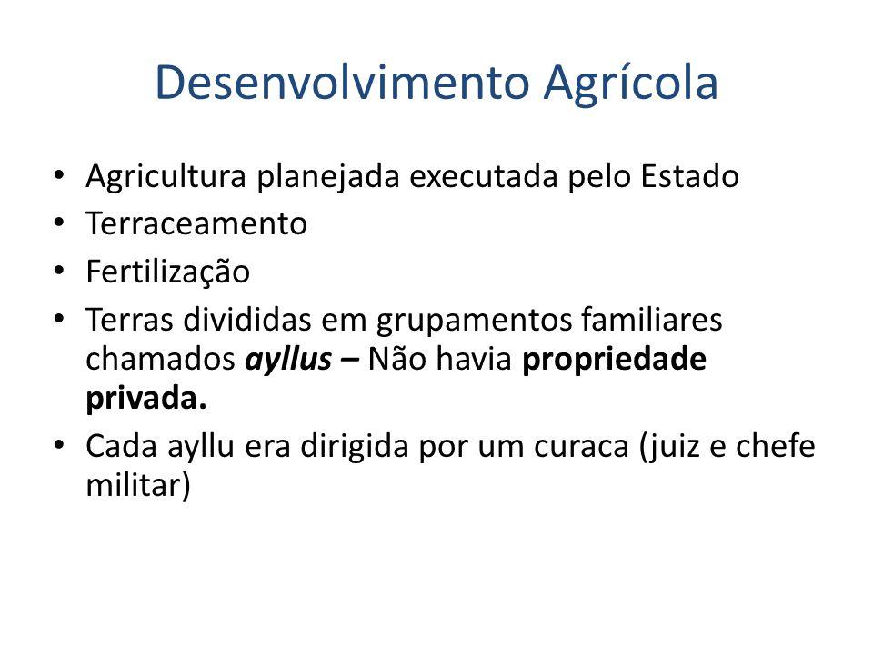 Desenvolvimento Agrícola Agricultura planejada executada pelo Estado Terraceamento Fertilização Terras divididas em grupamentos familiares chamados ayllus – Não havia propriedade privada.