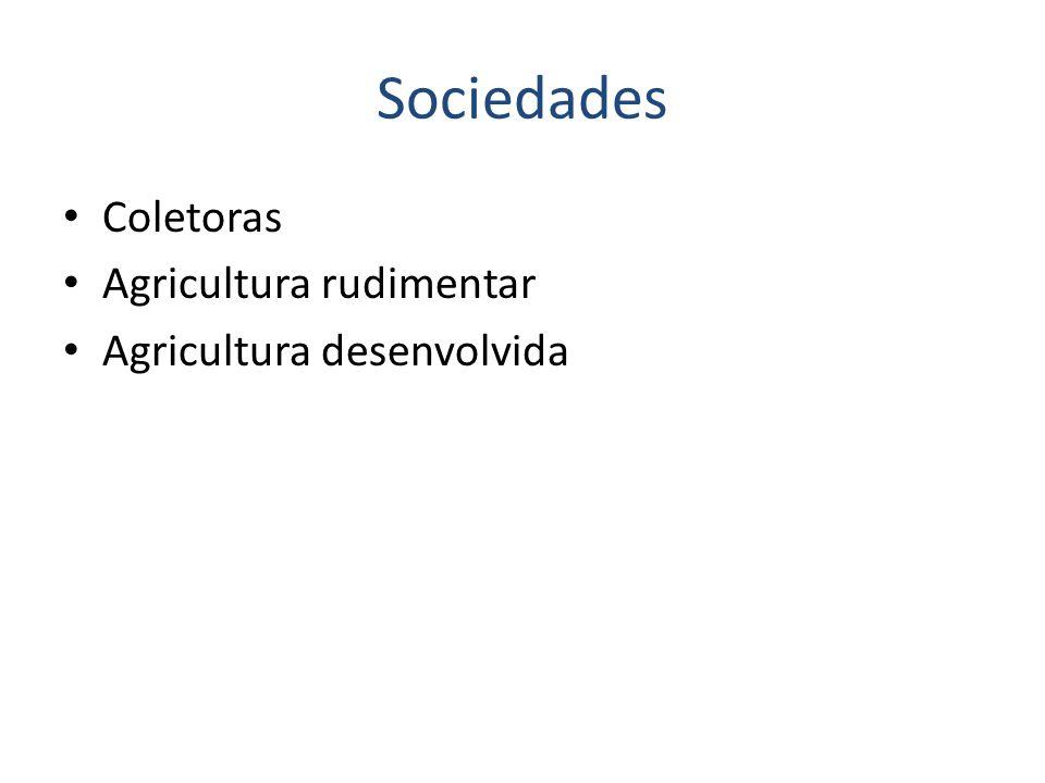 Sociedades Coletoras Agricultura rudimentar Agricultura desenvolvida
