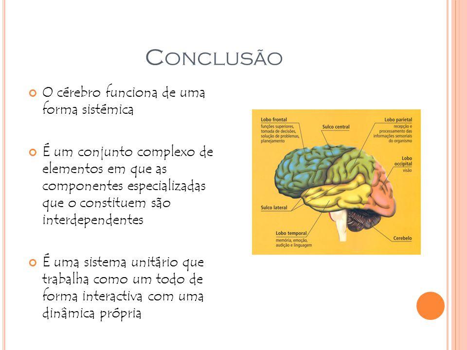 C ONCLUSÃO O cérebro funciona de uma forma sistémica É um conjunto complexo de elementos em que as componentes especializadas que o constituem são int