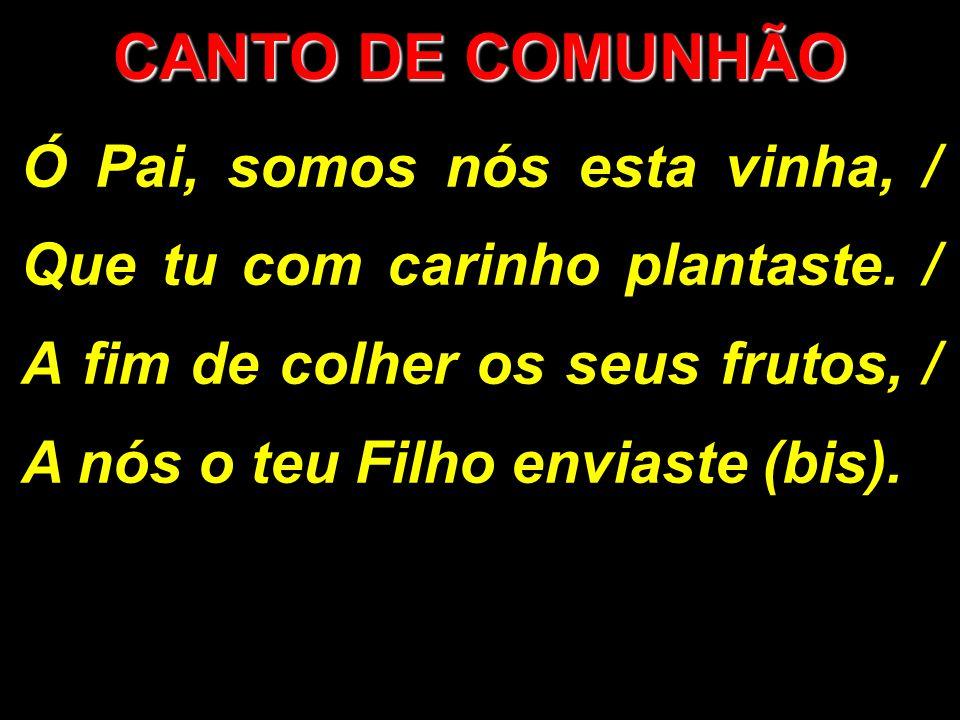 Ó Pai, somos nós esta vinha, / Que tu com carinho plantaste. / A fim de colher os seus frutos, / A nós o teu Filho enviaste (bis). CANTO DE COMUNHÃO