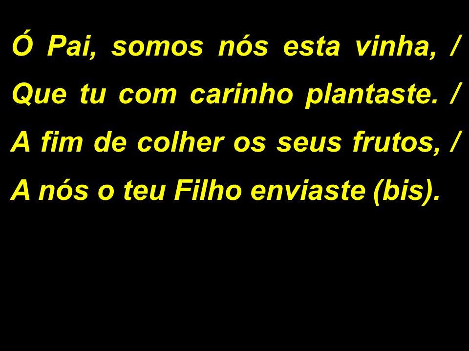 Ó Pai, somos nós esta vinha, / Que tu com carinho plantaste. / A fim de colher os seus frutos, / A nós o teu Filho enviaste (bis).